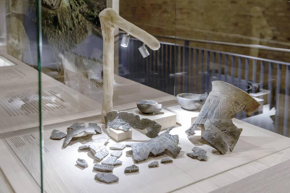 Steinzeitvitrine